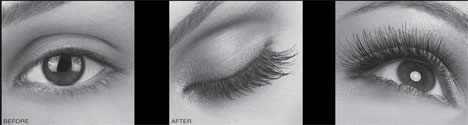 956dded58dc LASH beLONG professional Eyelash Extensions allow you, a salon and spa  professional, to expand