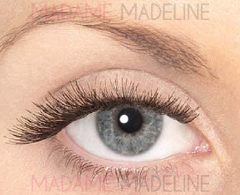 ab0556f40a6 ... Eylure Individual Lashes Set Medium, Ardell Chocolate Collection;  Review; Eylure; Pro Lash Individuals ...